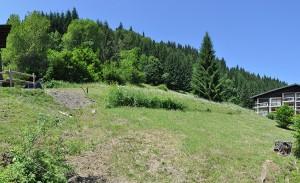 Le terrain Altaka